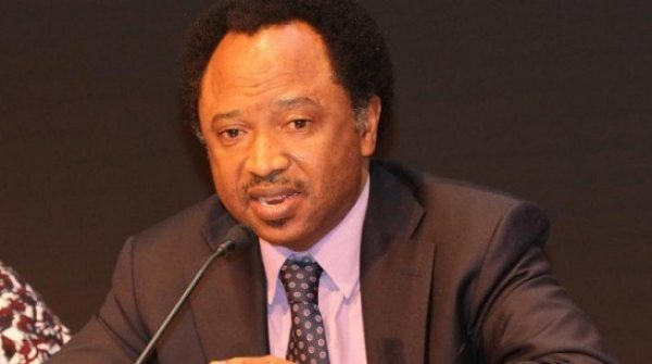 2023 Presidency: Ask Your Family Before You Contest – Shehu Sani Tells Governors
